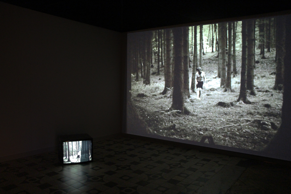 Die Waldmaus sucht einen Freund: installation view, 2014