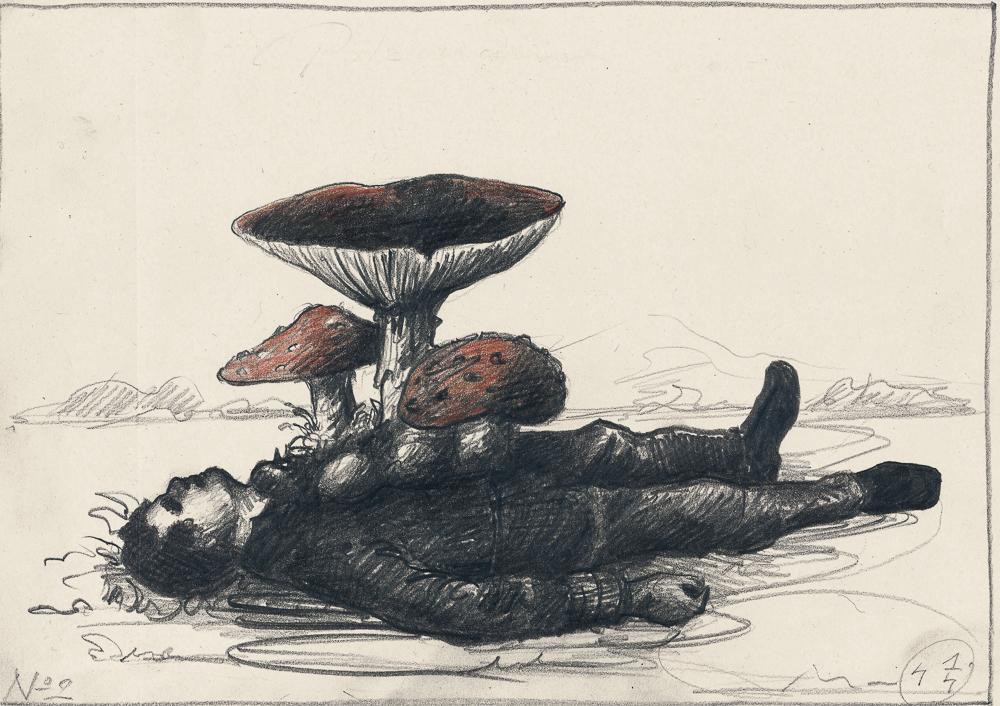uomo funghi: graphite, colour pen/paper, 21 x 30 cm, 2014