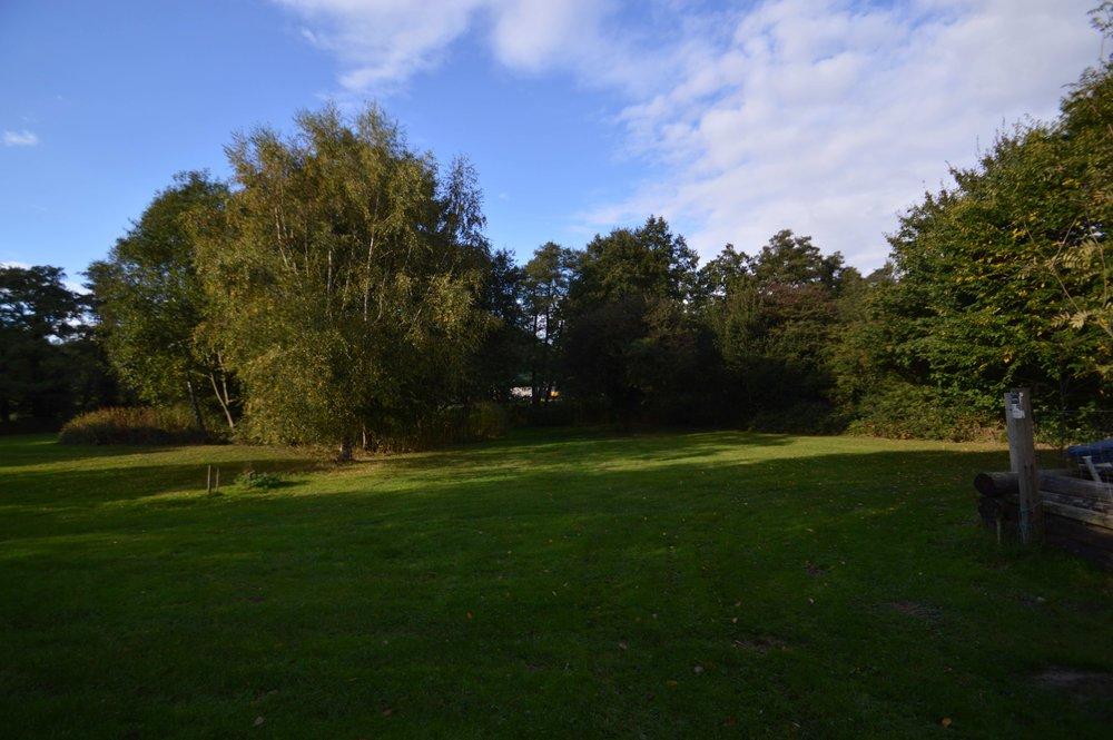 Site 3 - Hawthorn