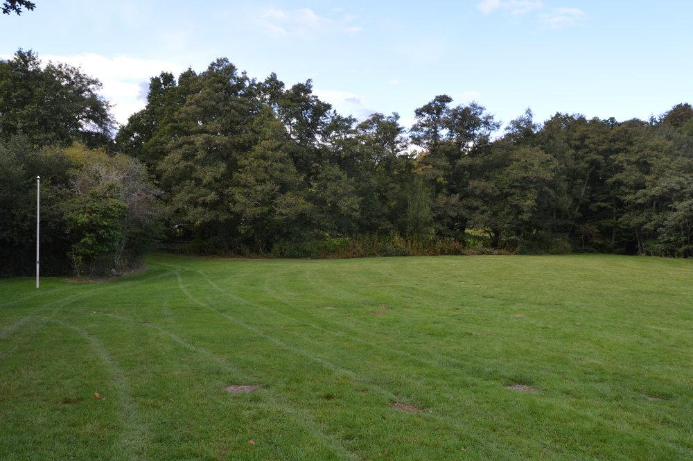 Site 4 - Oak