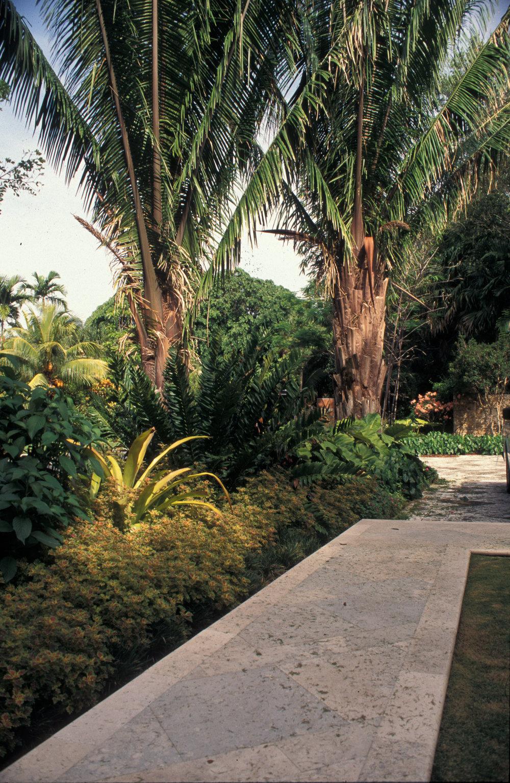 Spanish Tropical_-5.jpg