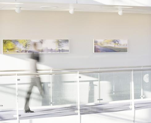 artwork-for-interiors-experian