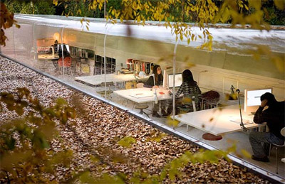 nature-office-design