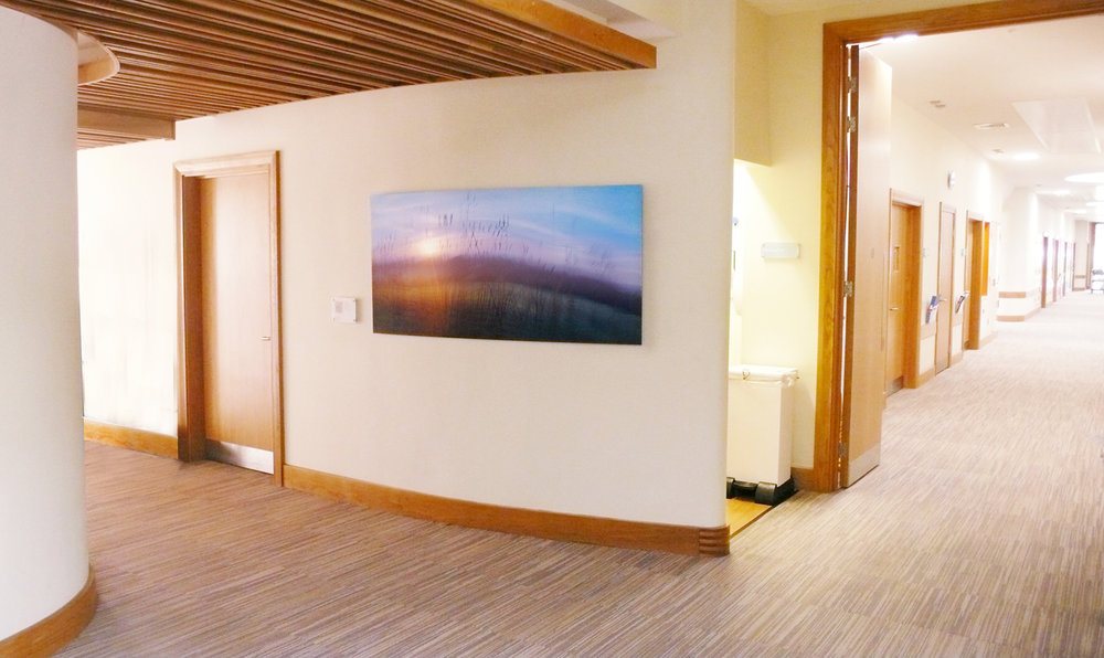 Artwork installed in the St Giles Palliative care hospice