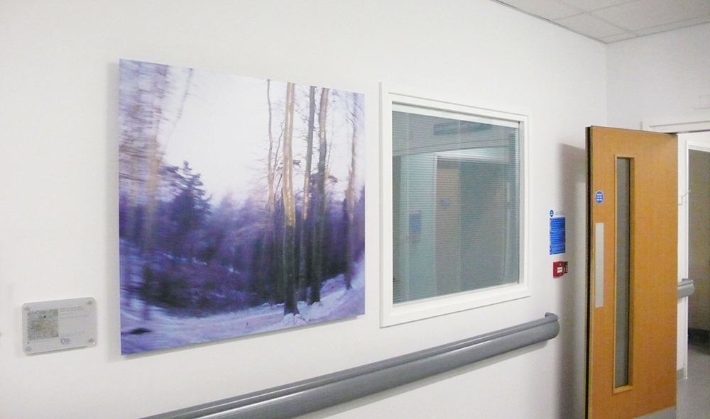 Artwork installed in the Burns Centre at the Queen Elizabeth Hospital, Birmingham