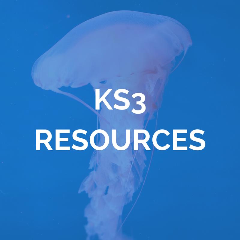 KS3 MATHS RESOURCES