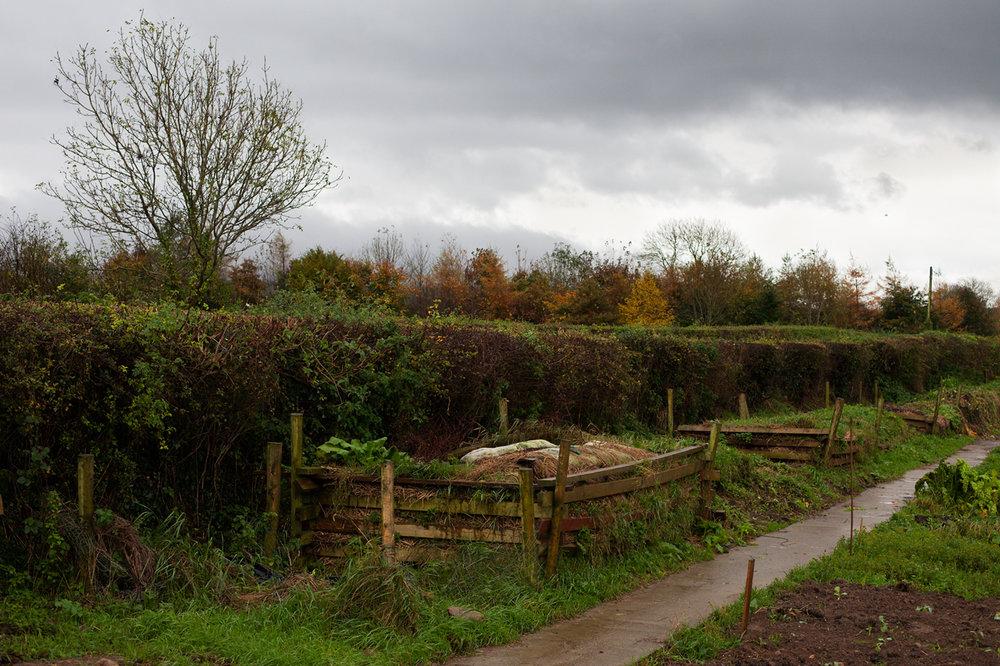 Grey garden beds
