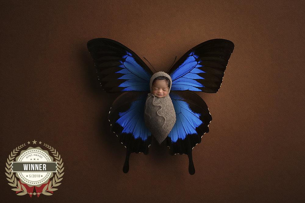 56906441_butterfly_baby.jpg