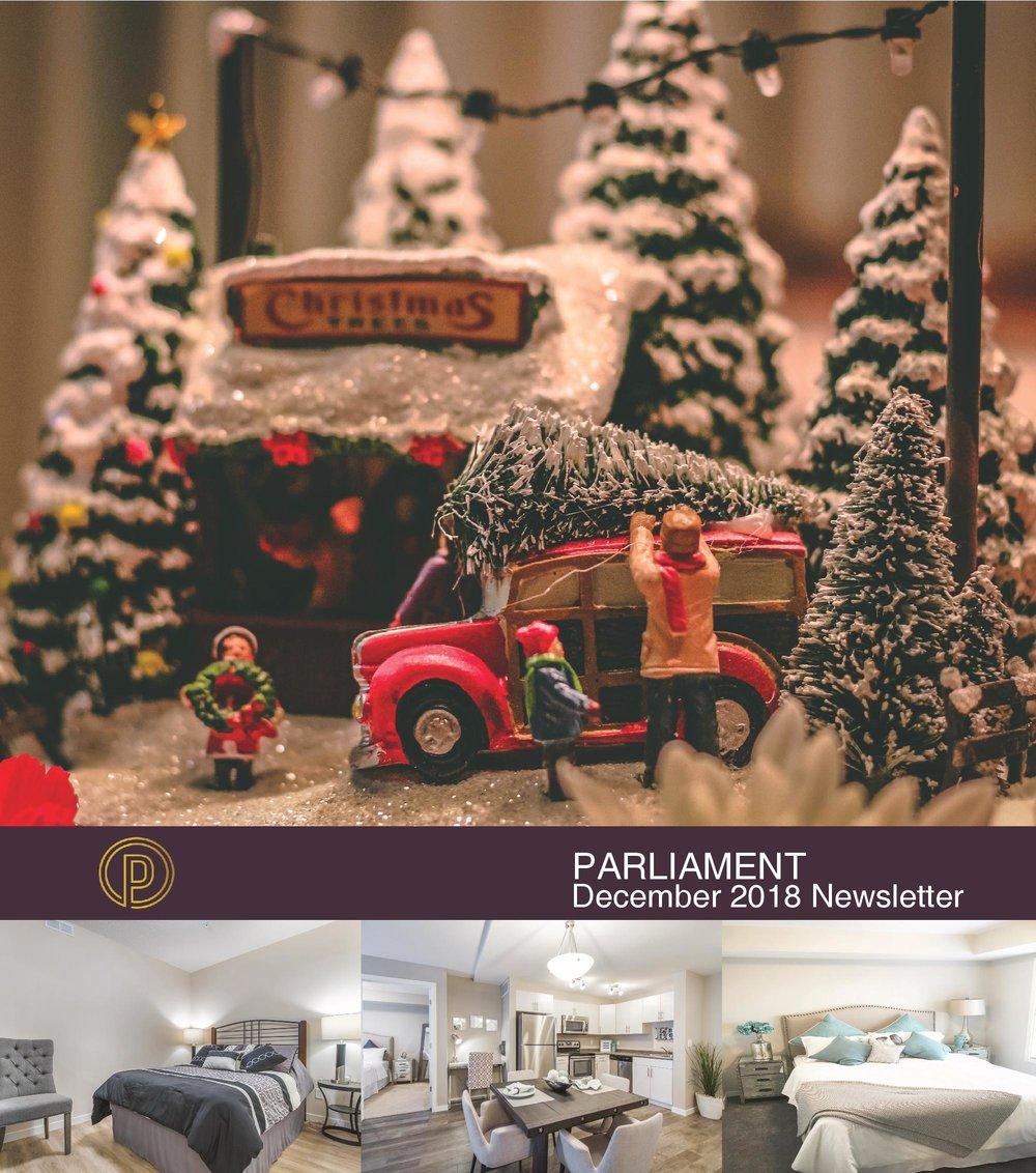November 20th December Newsletter Parliament-page-001.jpg