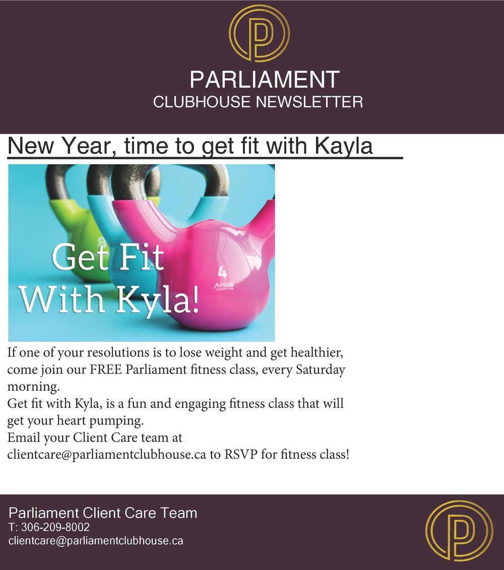 Parliament Newsletter January 2019-1-page-004.jpg