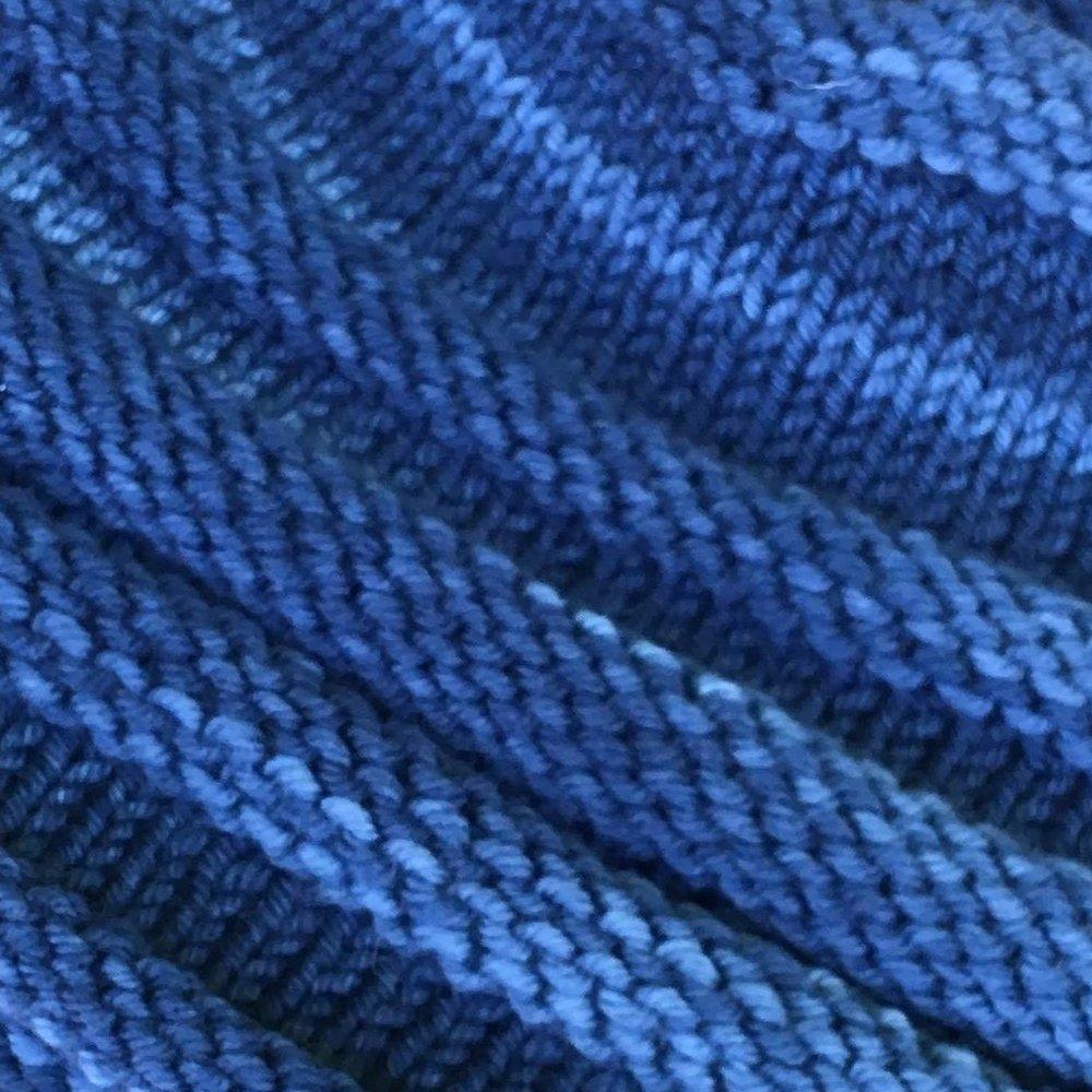 flycatcher blue agave.JPG