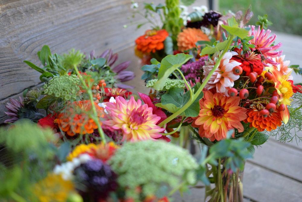 CSA Flower Shares