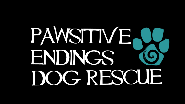 Pawsitive Endings Dog Rescue