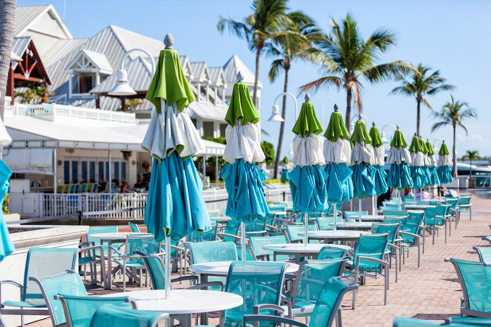 Bistro 245 Key West Waterfront Dining.jpg