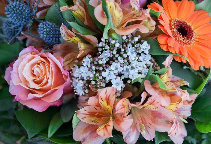 flowers-3149495__480.jpg