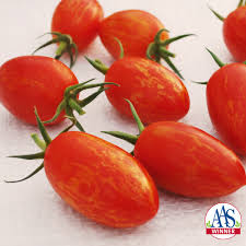 AP tomato Whaley Red Torch.jpg