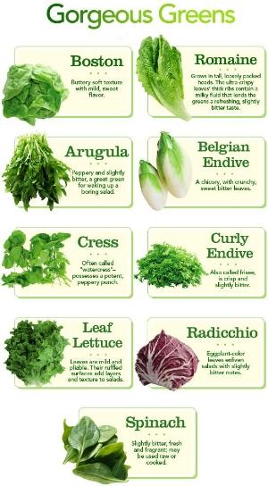 different types of lettuce.jpg