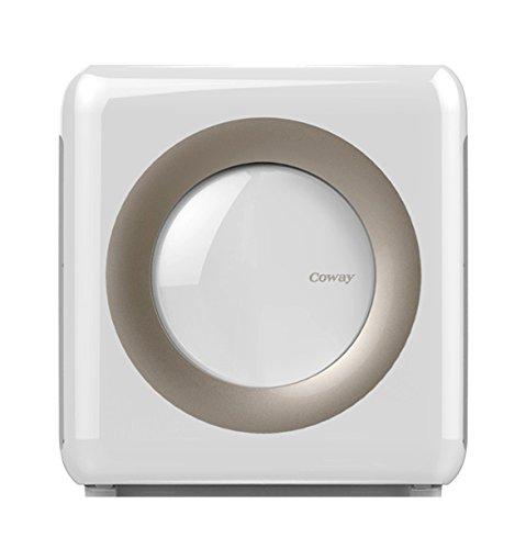 Coway Air Filter.jpg