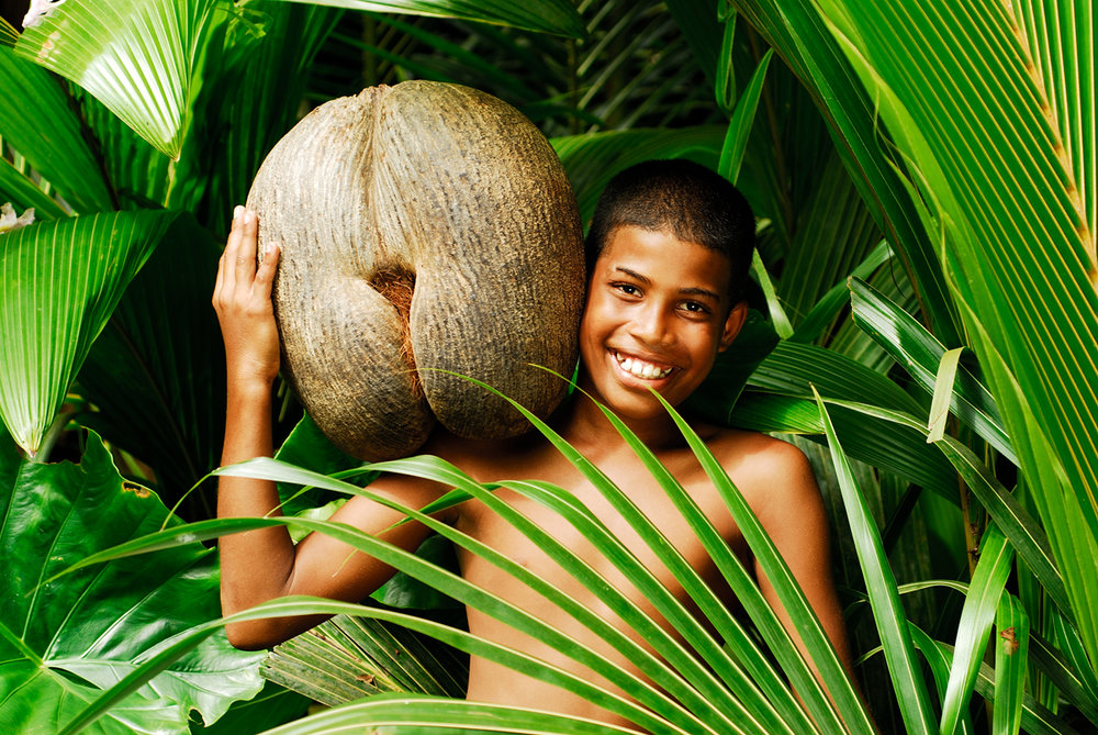 I can't Forget what my experience at the conservatory in Praslin; the fact about Coco Der Mer... the wonder nut, only found in Seychelles. Image: newtonsapple
