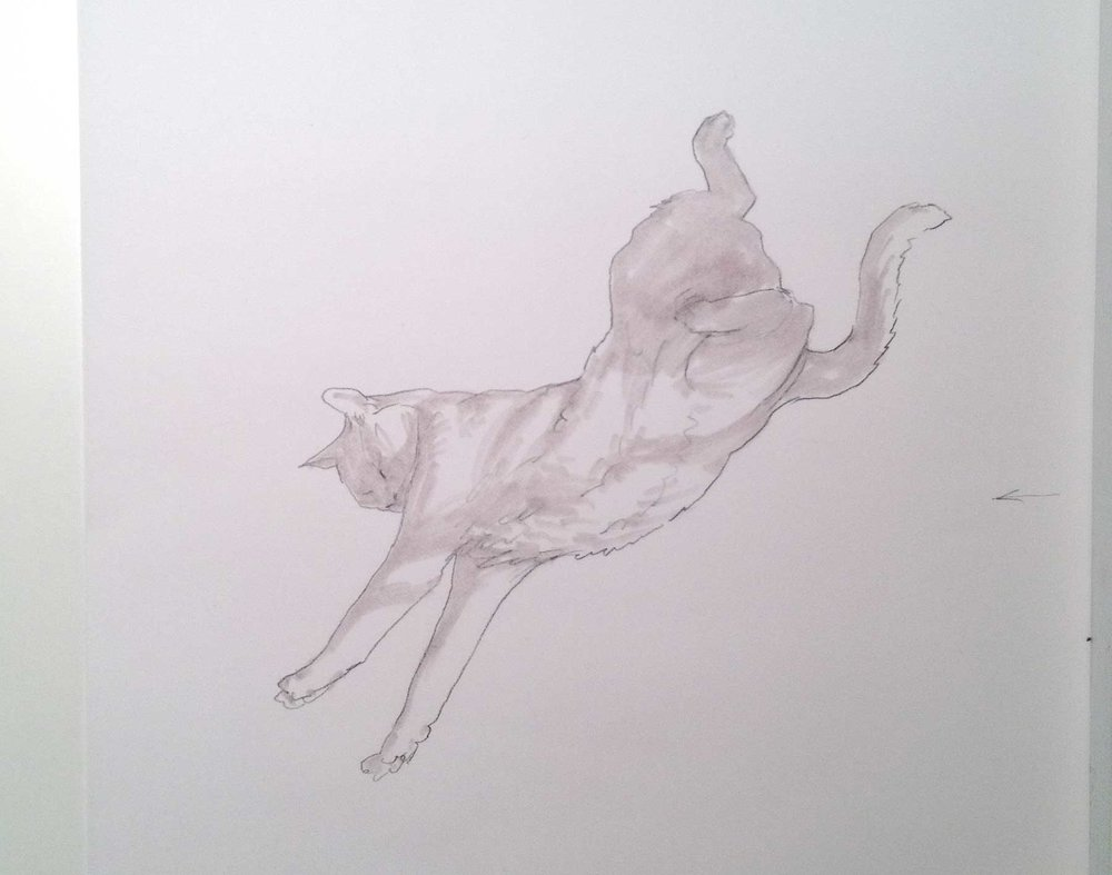 The following are a selection of methods I learned from you in support of my  Dark Animal  painting series. This is a simple concept sketch of the falling/floating cat figure I wanted.