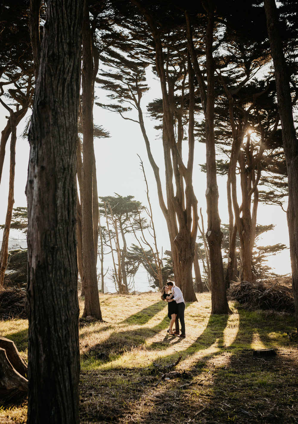 Lands End trees couple kissing engagement