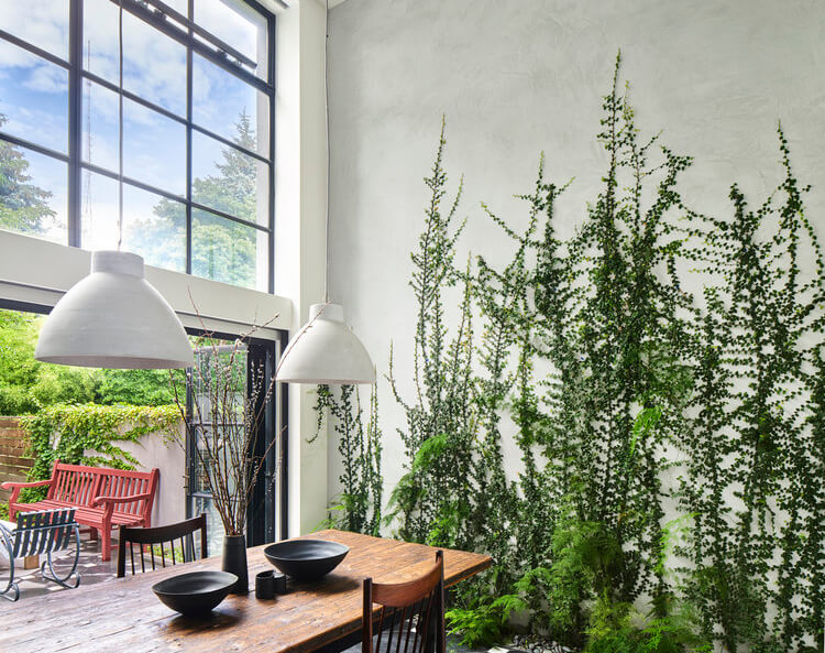 BROWNSTONER: LIVING GREEN WALLS