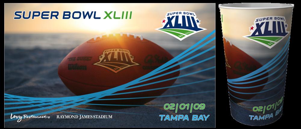 Super Bowl XLIII -