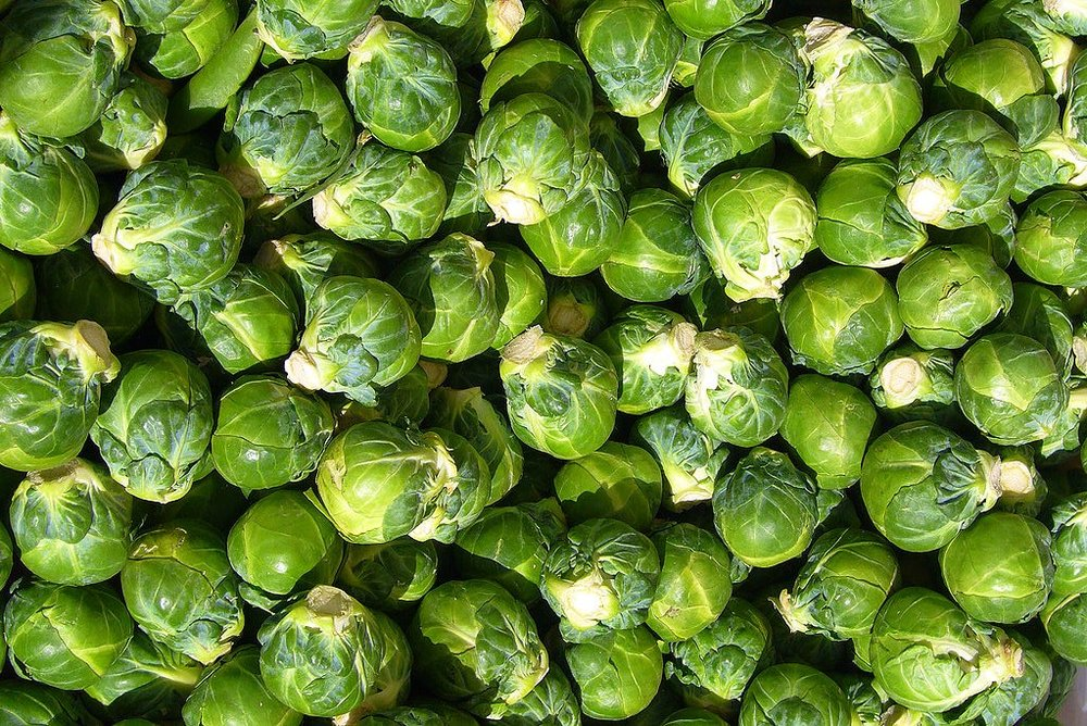 brusselssprouts.jpg