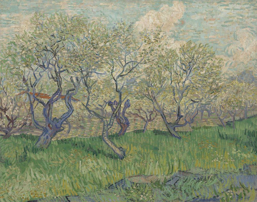Orchards in Blossom, 1889. Credit to the Van Gogh Museum.