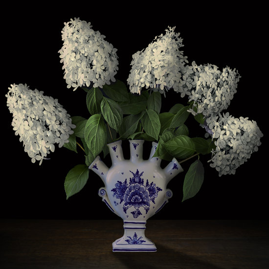 """Still life with Limelight Hydrangeas in a Delft tulipiere"", 2017(Vase from the Artist's collection), 60"