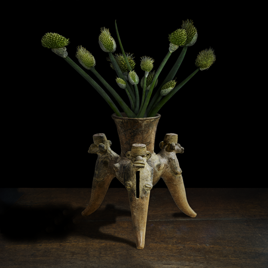 """Still life with Onion Flowers in a tripod Ancient America vessel"" , 2017 (Vase courtesy of the Gardiner Ceramic Museum), 40""X40"", limited edition, archival pigment print. - The pre-Columbian vessel was photographed by TM Glass with permission from the Gardiner Ceramic Museum. The onion flowers came from the artist's kitchen garden."