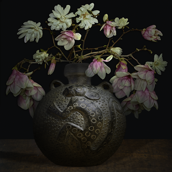 """Still life with Magnolias and an Ancient America vessel"", 2017 (Vase courtesy of the Gardiner Ceramic Museum), 40""X40"", limited edition, archival pigment print. - The pre-Columbian vessel is 1500 years old. It was photographed by TM Glass with permission from the Gardiner Ceramic Museum. The magnolia flowers came from the artist's garden. They are ancient flowers that existed on earth before the dinosaurs."