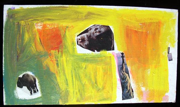 buffalo-and-dog.jpg