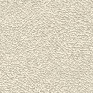 Levent Ivory