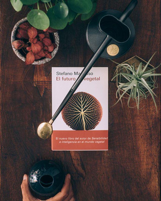 """¿Sabías que ? Uno de nuestros autores favoritos es Stefano Mancuso y que tras el éxito de su anterior libro """"Sensibilidad e inteligencia"""", ha publicado este maravilloso ensayo """"EL FUTURO ES VEGETAL"""" donde nos cuenta todo y más de lo que debemos aprender de las plantas.  Así que ya lo sabes, el libro que no te puedes no leer está también de venta en PLANTHAE - F: @estudiorotula  #plantsmakepeoplehappy #plants #bookshop #botanyshop #pottery #stefanomancuso #elfuturoesvegetal #hawswateringcans"""
