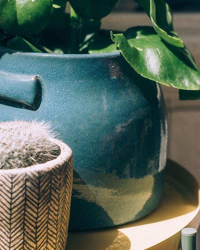 Y sí, estos maceteros y muchos más los podrás encontrar en nuestra tienda de Dr. Fourquet y online www.planthae.com • F : @estudiorotula • #plantsmakepeoplehappy #nicepotsmakeplantshappy #planthae #greendecoration #madrid #gabinetebotanico #plantshop