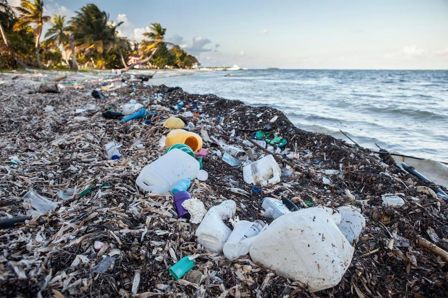 Organic Spa Magazine | Oceans of Plastic