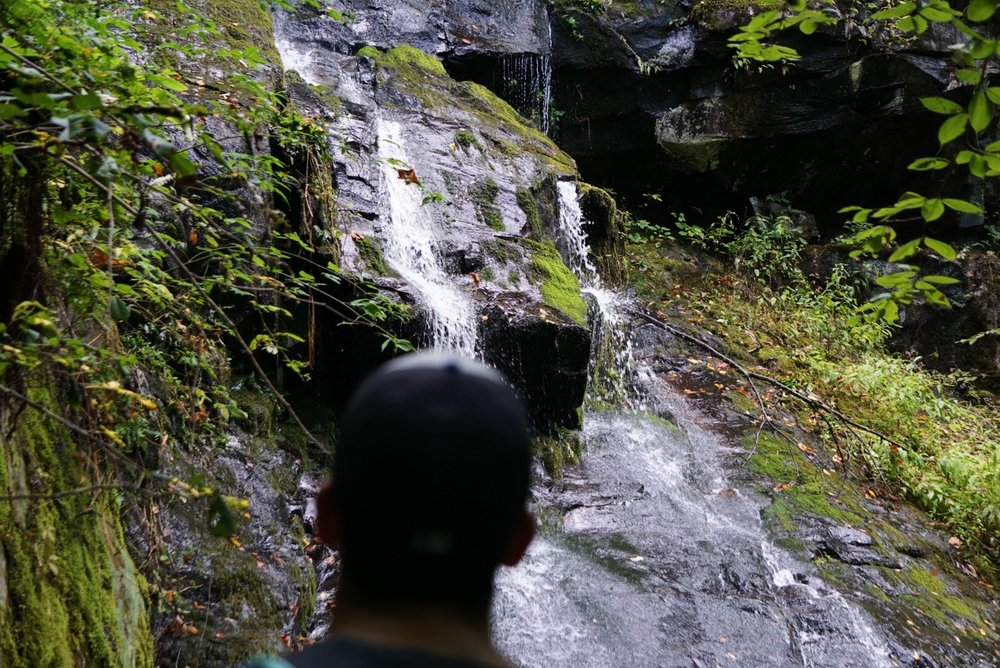 Admiration at creation.