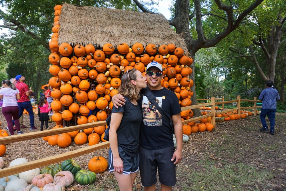 FALL in LOVE.