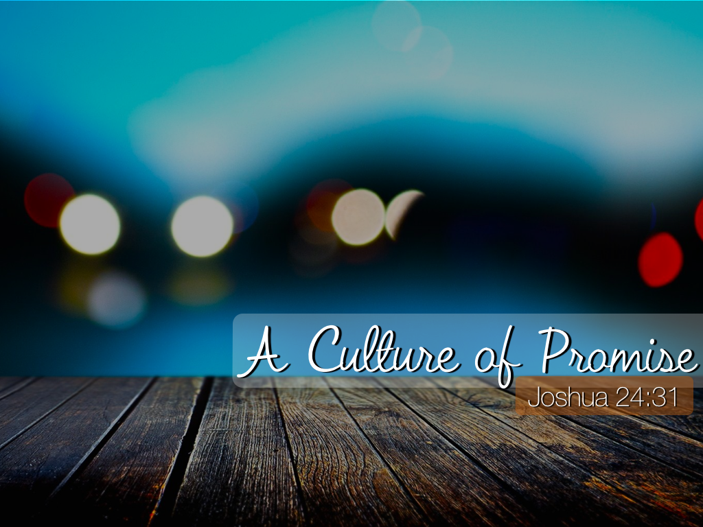 Culture of Promise
