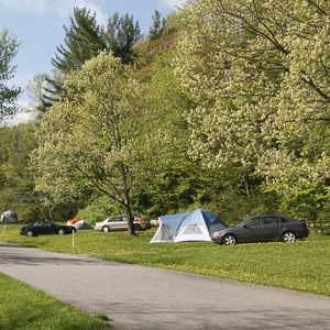 Tents in the Quartzite Campground
