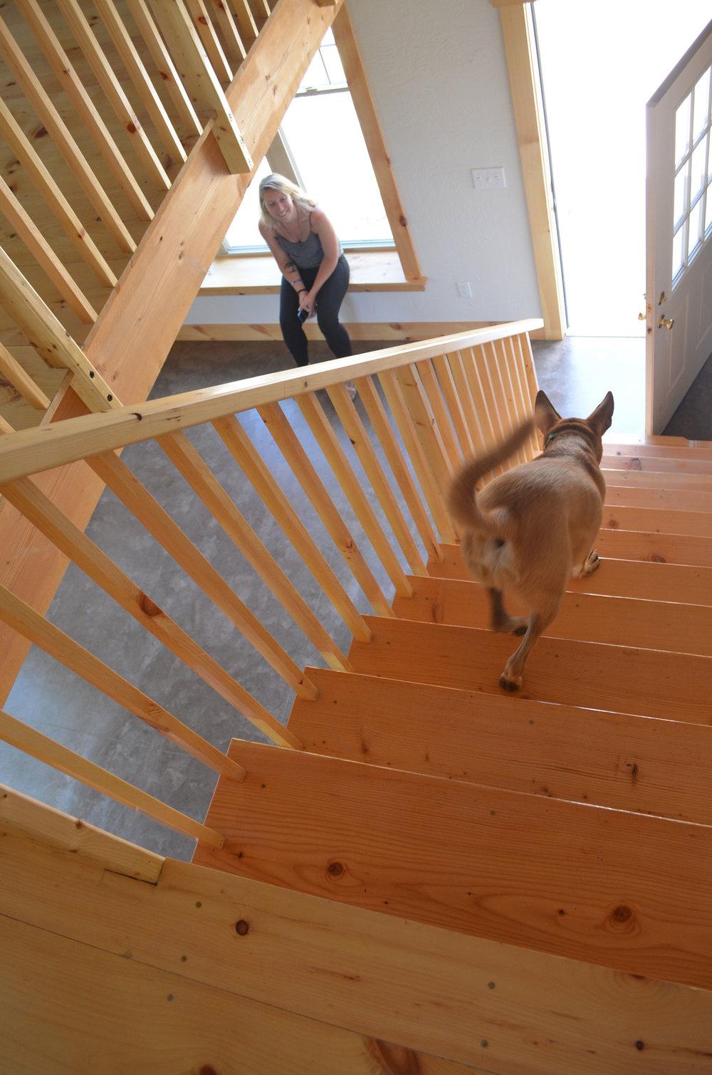 la-bourgade-on-seneca-stairs.jpg