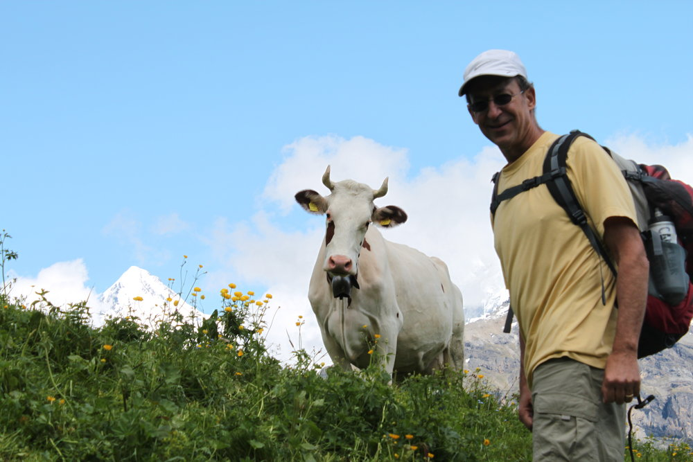 My dad & his new best friend on a hike outside the Alpen village of Mürren. One of the greatest days of my life. - How now, not brown cow?