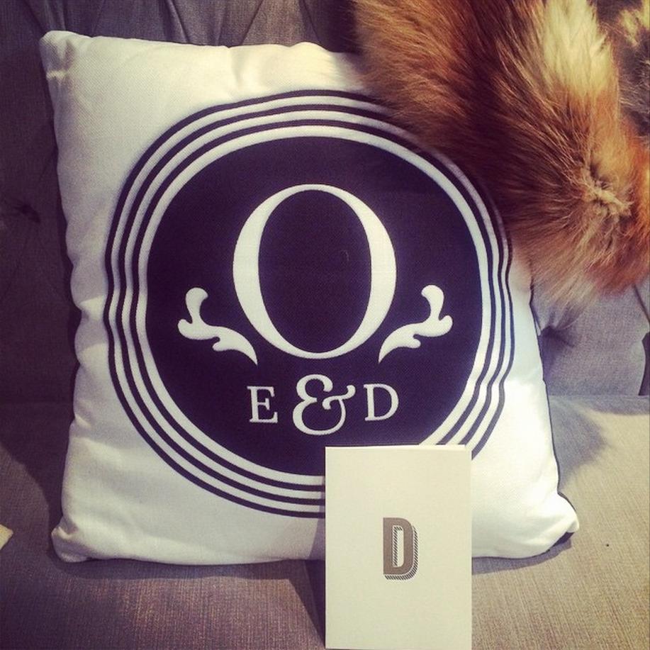 Dana Lu graphic design oudalova logo cushion