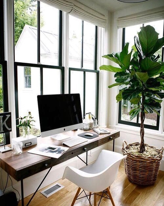 Inspiration // Corner office goals 📷: Pinterest #corneroffice #naturallight ⠀⠀⠀⠀⠀⠀⠀⠀⠀⠀⠀⠀ ⠀⠀⠀⠀⠀⠀⠀⠀⠀⠀⠀⠀ ⠀⠀⠀⠀⠀⠀⠀⠀⠀⠀⠀⠀ ⠀⠀⠀⠀⠀⠀⠀⠀⠀⠀⠀⠀ ⠀⠀⠀⠀⠀⠀⠀⠀⠀⠀⠀⠀ ⠀⠀⠀⠀⠀⠀⠀⠀⠀⠀⠀⠀ ⠀⠀⠀⠀⠀⠀⠀⠀⠀⠀⠀⠀ ⠀⠀⠀⠀⠀⠀⠀⠀⠀⠀⠀⠀ ⠀⠀⠀⠀⠀⠀⠀⠀⠀⠀⠀⠀ ⠀⠀⠀⠀⠀⠀⠀⠀⠀⠀⠀⠀ ⠀⠀⠀⠀⠀⠀⠀⠀⠀⠀⠀⠀ ⠀⠀⠀⠀⠀⠀⠀⠀⠀⠀⠀⠀ ⠀⠀⠀⠀⠀⠀⠀⠀⠀⠀⠀⠀ ⠀⠀⠀⠀⠀⠀⠀⠀⠀⠀⠀⠀ ⠀⠀⠀⠀⠀⠀⠀⠀⠀⠀⠀⠀ ⠀⠀⠀⠀⠀⠀⠀⠀⠀⠀⠀⠀ ⠀⠀⠀⠀⠀⠀⠀⠀⠀⠀⠀⠀ ⠀⠀⠀⠀⠀⠀⠀⠀⠀⠀⠀⠀ #homeoffice #appleuser #plantlover #welovegreens #plantsmakepeoplehappy #plantlife #alwaysgrowing #windows #allthelight