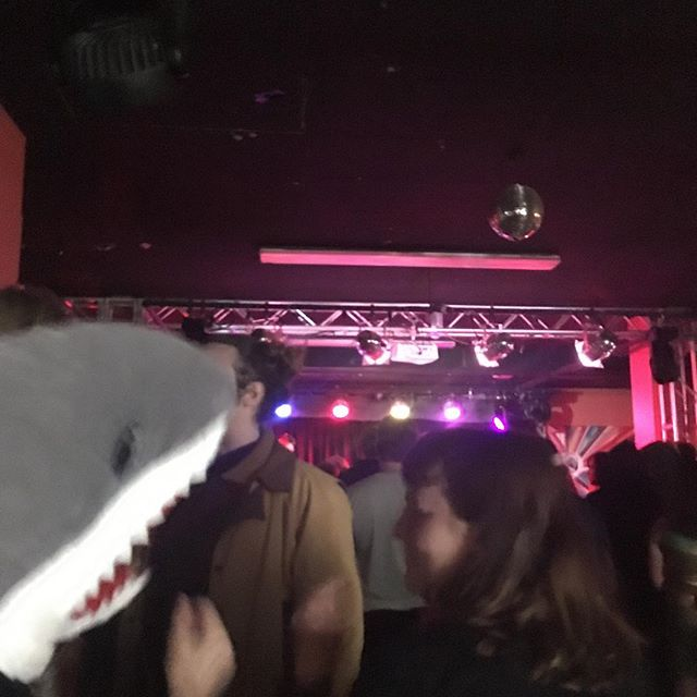 This Shark and friends are really enjoying Rando Bando