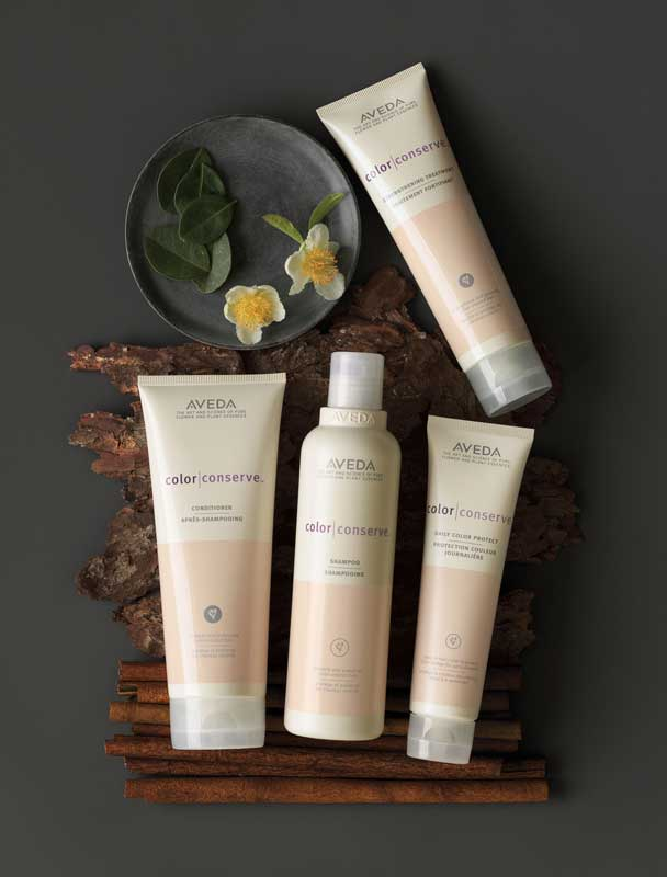 aveda-color-conserve-products.jpg