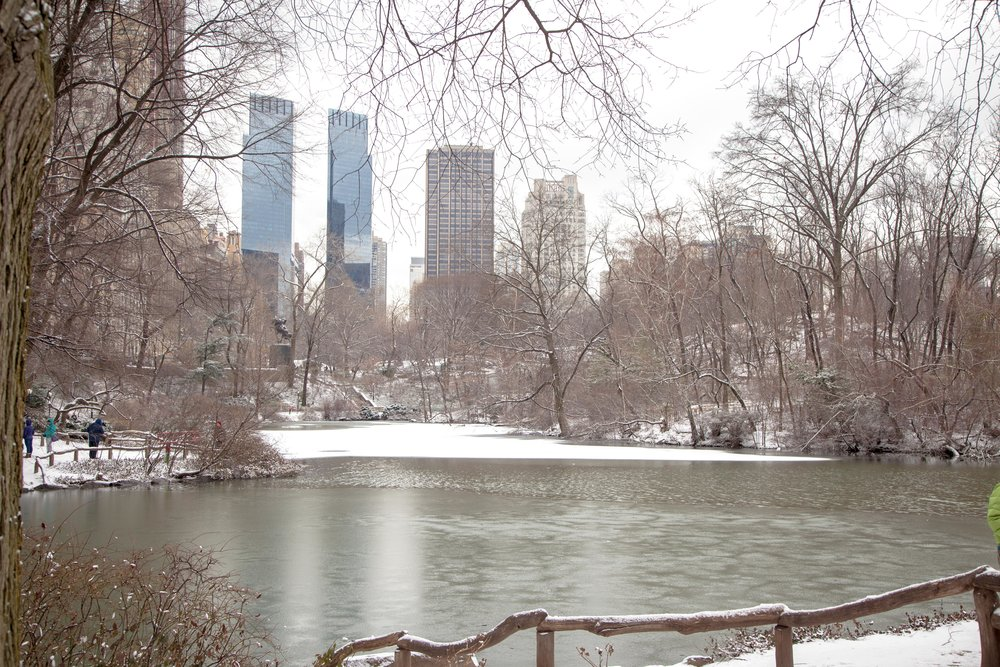 NYC Winter 2017 - 4764