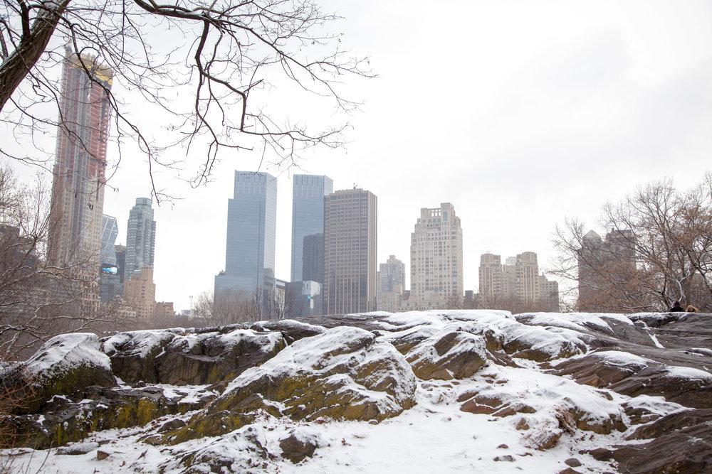 NYC Winter 2017 - 4857