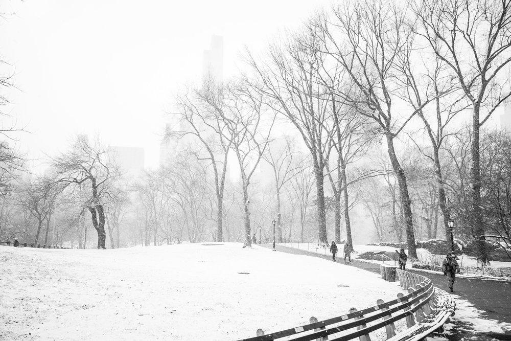 NYC Winter 2017 - 4951